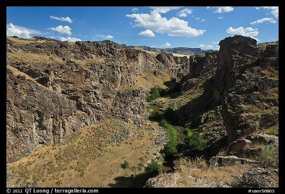 Succor Creek canyon. Oregon, USA (color)