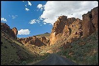 Road in Leslie Gulch. Oregon, USA ( color)