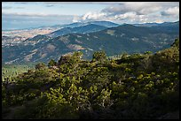 Forested ridges from Hobart Bluff. Cascade Siskiyou National Monument, Oregon, USA ( color)