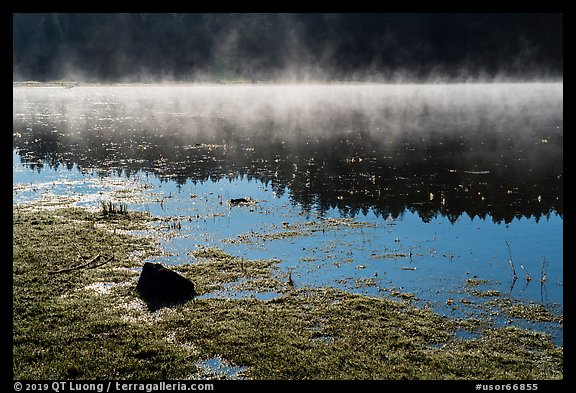 Fog and sunlight, Hyatt Lake. Cascade Siskiyou National Monument, Oregon, USA (color)