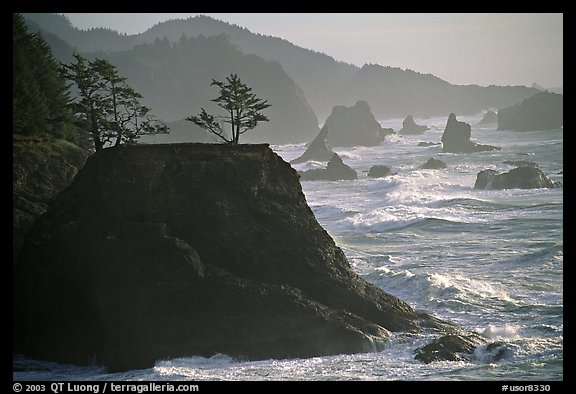 Coastline with rocks and seastacks, Samuel Boardman State Park. Oregon, USA (color)