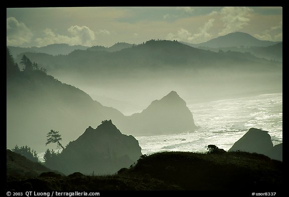 Rugged Coastline, late afternoon, Hamburg Mountain State Park. Oregon, USA (color)