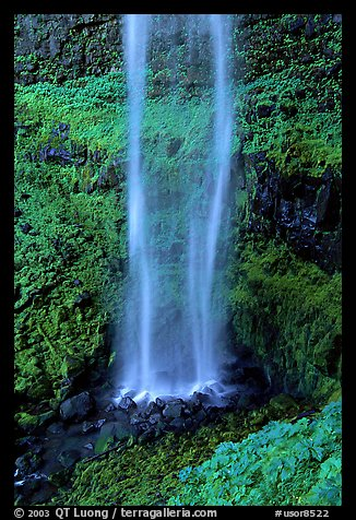 Diaphane waterfall, North Umpqua watershed. Oregon, USA (color)