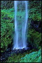Diaphane waterfall, North Umpqua watershed. Oregon, USA