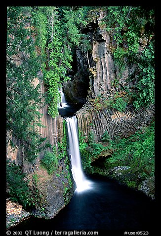 Toketee Falls  and wall of columnar balsalt. Oregon, USA (color)