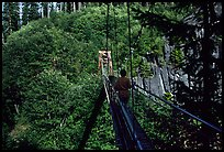 Hiker walks on suspension bridge, Lava Canyon. Mount St Helens National Volcanic Monument, Washington (color)