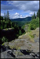 Lava Canyon. Mount St Helens National Volcanic Monument, Washington (color)