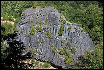 Bloc of columnar basalt, Lava Canyon. Mount St Helens National Volcanic Monument, Washington (color)
