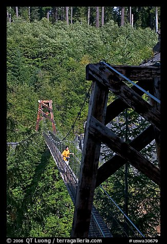 Suspension bridge over Lava Canyon. Mount St Helens National Volcanic Monument, Washington (color)