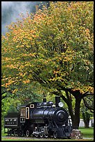 Locomotive under tree in fall foliage, Newhalem. Washington (color)