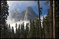 Liberty Bell Mountain framed by spruce trees. Washington (color)