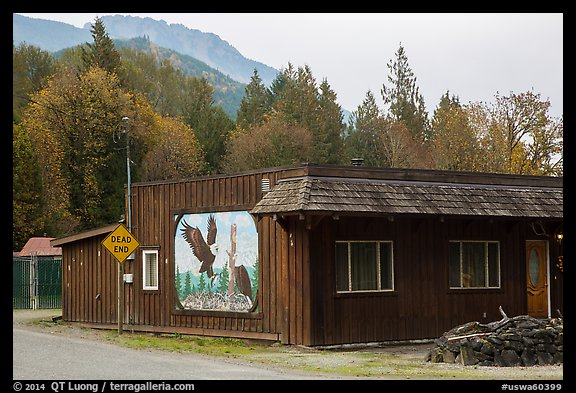 Wooden house with painted mural, Skagit Valley. Washington (color)