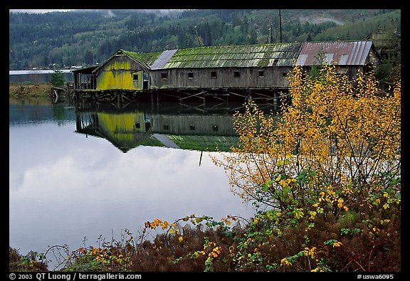 Wooden pier in autumn, Olympic Peninsula. Olympic Peninsula, Washington (color)