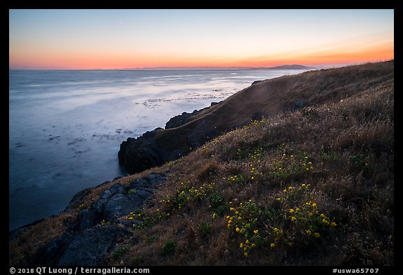 Coastline with wildflowers at sunset near Iceberg Point, Lopez Island. Washington (color)