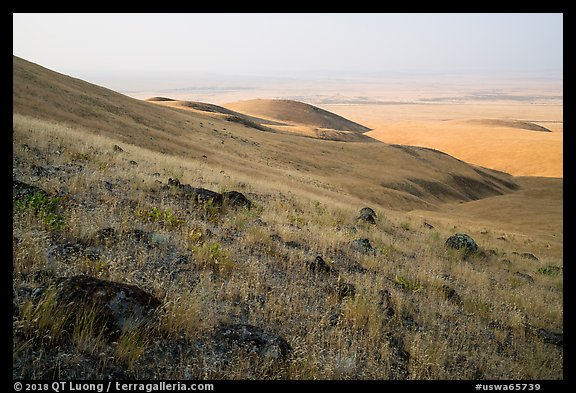 Rocks and grasses on hills and plain, Saddle Mountain Unit, Hanford Reach National Monument. Washington (color)