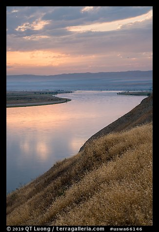 Grasses and Columbia River at sunset, Hanford Reach National Monument. Washington (color)