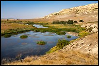 White bluffs and wetlands, Hanford Reach National Monument. Washington ( color)