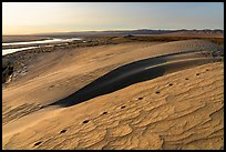 Animal tracks, sand dunes, and Locke Island, Hanford Reach National Monument. Washington ( color)