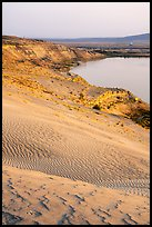 Sand dunes and white bluffs, Hanford Reach National Monument. Washington ( color)
