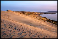 Sand ripples and Columbia River at sunset, Hanford Reach National Monument. Washington ( color)