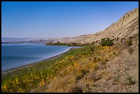 White Bluffs and Columbia River by moonlight, Hanford Reach National Monument. Washington ( color)