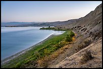 White Bluffs and Columbia River at dawn, Hanford Reach National Monument. Washington ( color)
