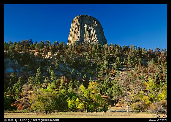 Devils Tower rising above forested slope. USA (color)
