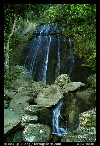 La Coca Falls, El Yunque, Carribean National Forest. Puerto Rico (color)