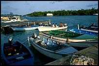 Small boats on a mangrove-covered cost, La Parguera. Puerto Rico (color)