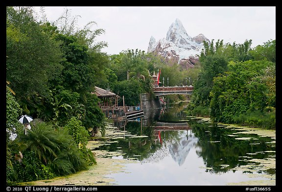 Tropical forest and Everest mountain, Animal Kingdom Theme Park. Orlando, Florida, USA