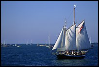 Old sailboat. Key West, Florida, USA (color)
