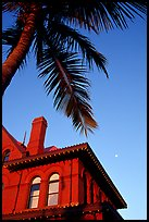 Red house and palm tree. Key West, Florida, USA ( color)