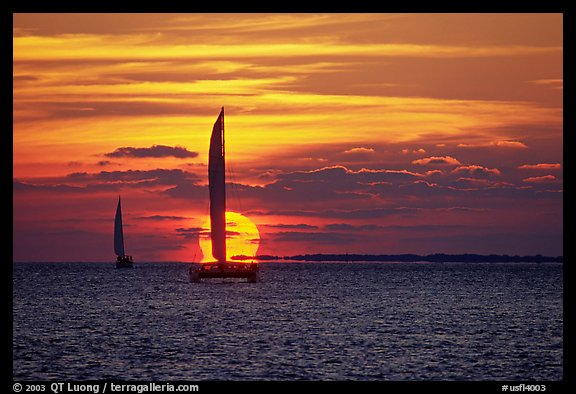 Sailboats viewed against sun disk at sunset. Key West, Florida, USA (color)