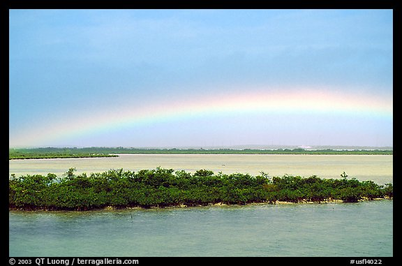 Rainbow above mangroves, Key West. The Keys, Florida, USA (color)
