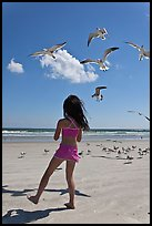 Girl playing with seabirds, Jetty Park beach. Cape Canaveral, Florida, USA ( color)