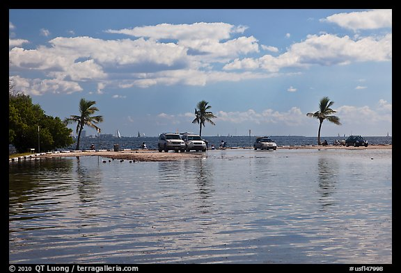 Flooded lot and Biscayne Bay, Matheson Hammock Park. Coral Gables, Florida, USA (color)