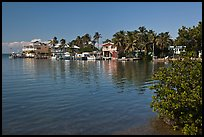 Conch cottages lining edge of Florida Bay, Conch Key. The Keys, Florida, USA ( color)