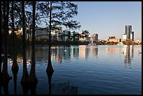 pictures of Orlando, Florida