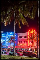 Palm treess and South Beach District Art Deco hotels at night, Miami Beach. Florida, USA ( color)
