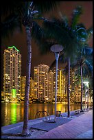 Palm trees, Miami Riverwalk, Brickell at night, Miami. Florida, USA ( color)