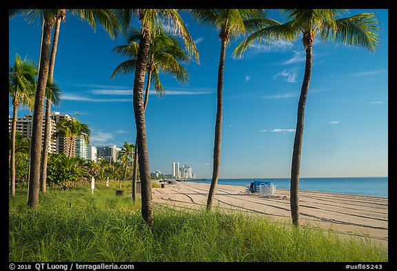 Ocean beach, North Beach, Miami Beach. Florida, USA (color)
