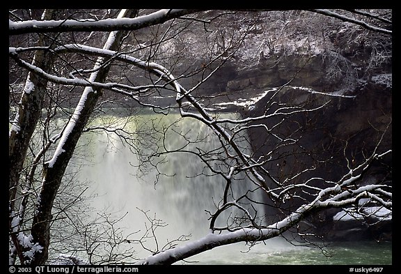 Snow-covered branch and Cumberland falls. Kentucky, USA (color)