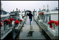 Rain in Saint Louis cemetery. New Orleans, Louisiana, USA (color)