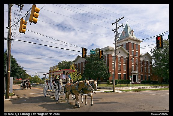 Horse carriage at street intersection. Vicksburg, Mississippi, USA