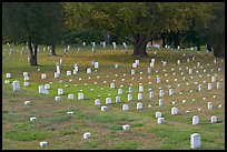 Headstones and trees, Vicksburg National Military Park. Vicksburg, Mississippi, USA ( color)