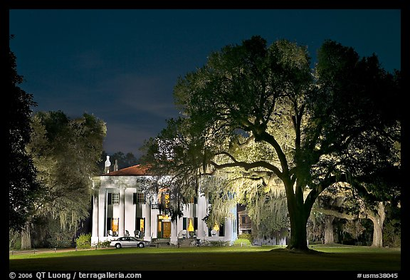 Antebellum mansion set in garden with  backlit oak tree at night. Natchez, Mississippi, USA (color)