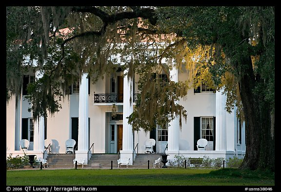 Antebellum house and live oak tree. Natchez, Mississippi, USA (color)