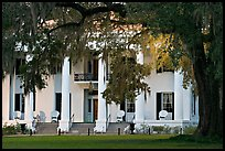 Antebellum house and live oak tree. Natchez, Mississippi, USA