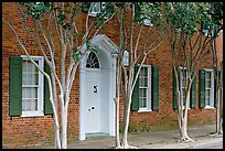 Rows of trees and Texada house. Natchez, Mississippi, USA (color)