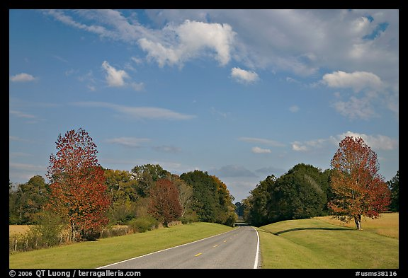 Road in meadow. Natchez Trace Parkway, Mississippi, USA (color)